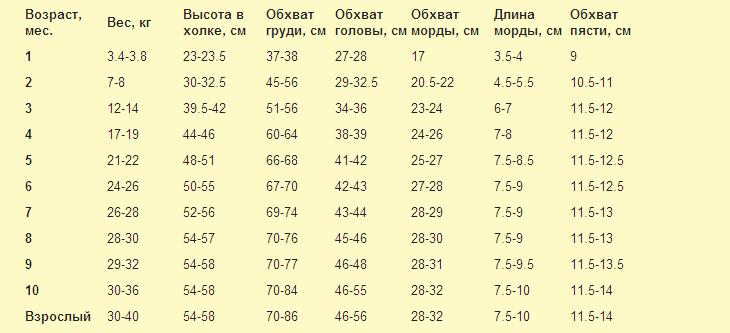 Таблица длин и весов по металлопрокату